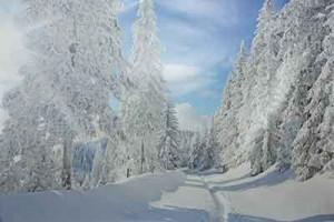 Hintergrund Winter-Fotoaktion 2016 Fotostudio Keepsmile, Castrop-Rauxel