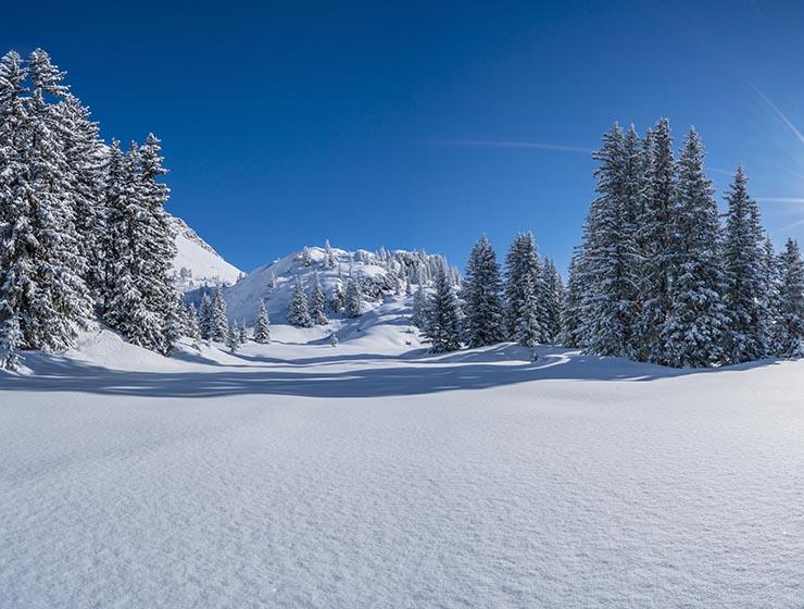 Winter-Fotoaktion 2019 Fotostudio Keepsmile